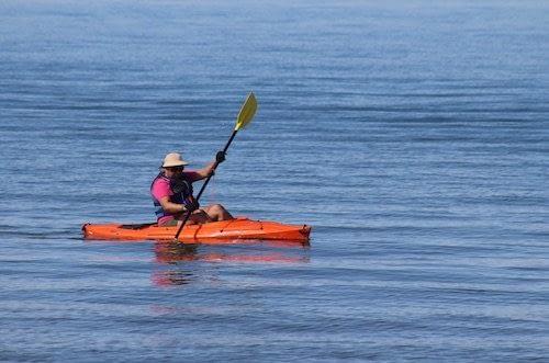 Kayaking en Dunedin