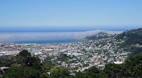 Qué hacer en Wellington con niños